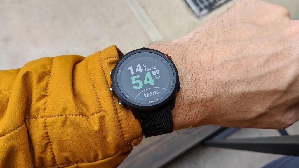 Cel mai bun smartwatch - Garmin